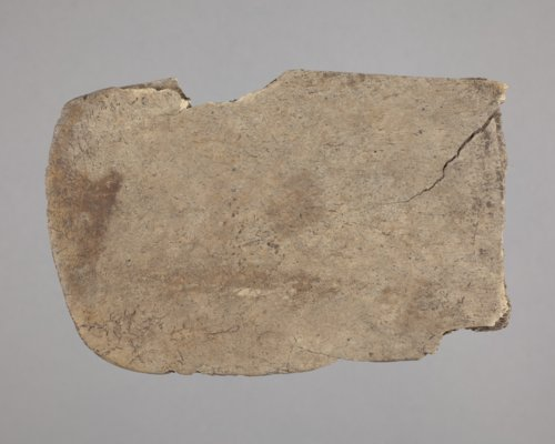 Bison Scapula Hoe from the Tobias Site, 14RC8 - Page