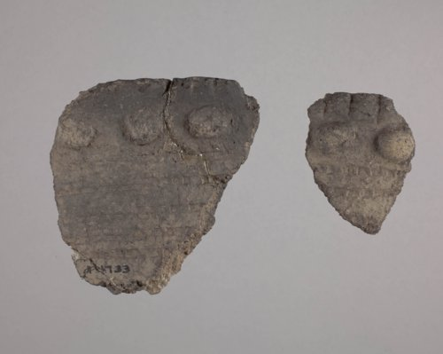 Kansas City Hopewell Rim Sherds from the Trowbridge Site, 14WY1 - Page