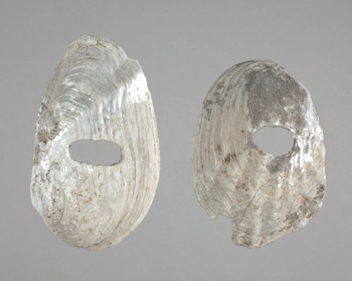 Shell Hoes from the Aerhart Site, 14OT5 - Page
