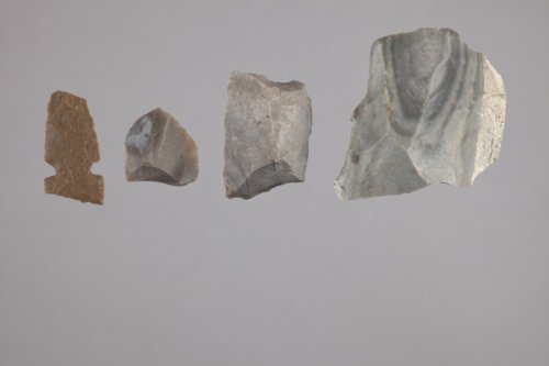 Lithic Collection from 14RP313 - Page