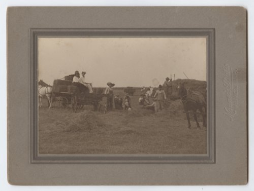 Haying on the Tyler Farm - Page