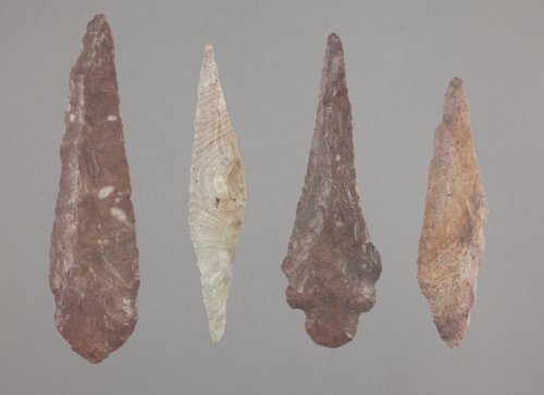 Alternately Beveled Knives from the Radio Lane Site, 14CO385 - Page