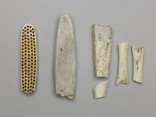 Toothbrush Fragments from the Baker Store, 14MO701 - Page