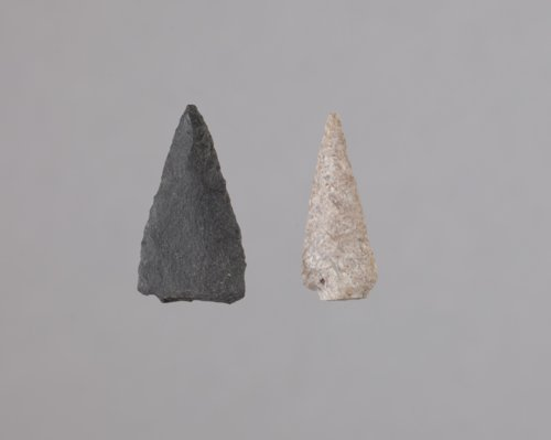 Corner Notched Arrow Points from the Anthony Site, 14HP1 - Page