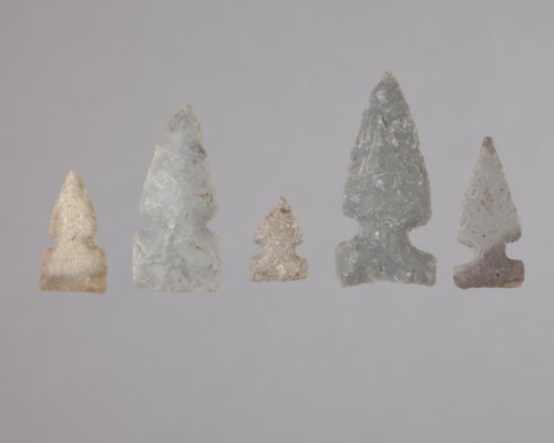 Side Notched Arrow Points from the Anthony Site, 14HP1 - Page