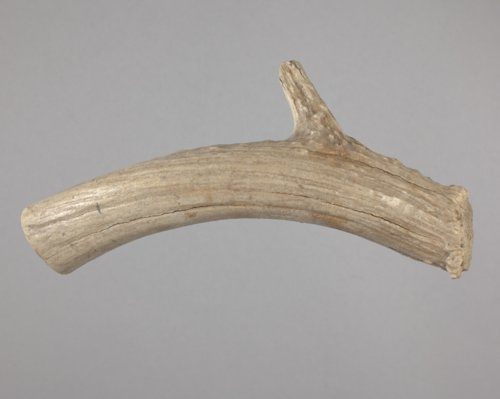Antler Billet from the Shrope Site, 14CO331 - Page