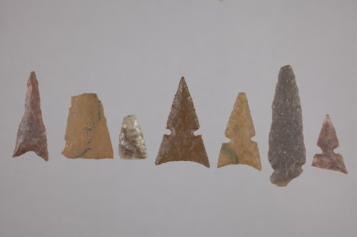 Projectile Points from the Tobias Site, 14RC8 - Page