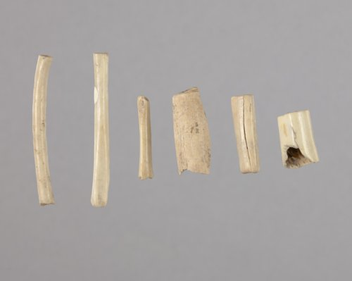 Bone Beads from the Tobias Site, 14RC8 - Page
