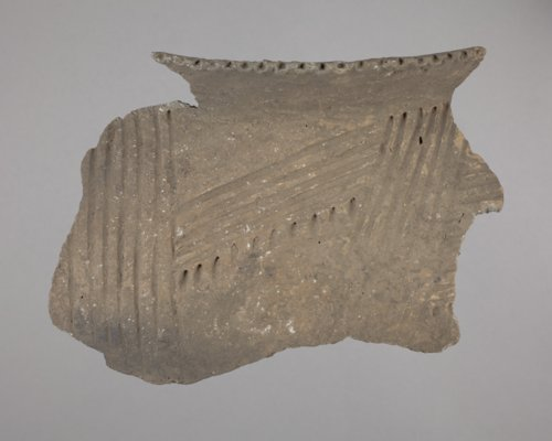 Oneota Rim Sherd from the Fanning Site, 14DP1 - Page