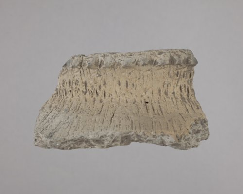 Rim Sherd from the Fanning Site, 14DP1 - Page