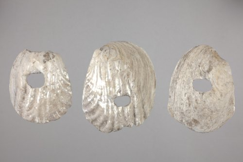 Shell Hoes from Archeological Site 14SA415 - Page