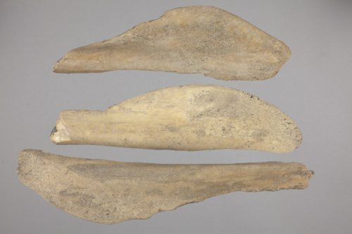 Bone Knives from the Minneapolis Site, 14OT5 - Page