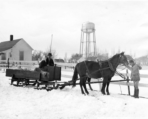 Horse drawn sled - Page