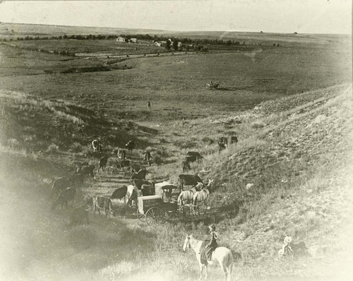 F. M. Steele's photography wagon - Page