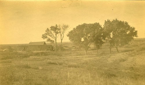 Buildings and a horse-drawn wagon,  Abo Canyon, New Mexico - Page