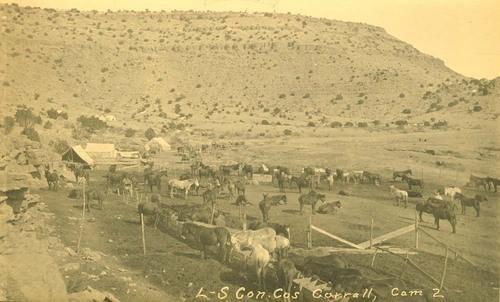 Horse corral, Abo Canyon, New Mexico - Page