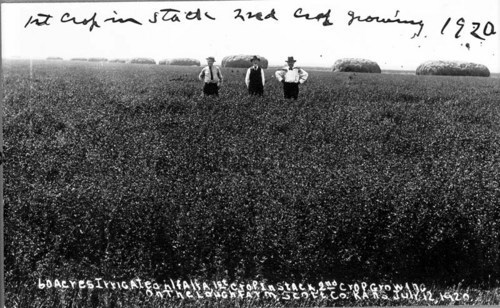 J. W. Lough farm, Scott County, Kansas - Page
