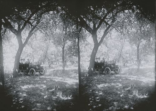 Automobile in a grove of trees, Russell County, Kansas - Page