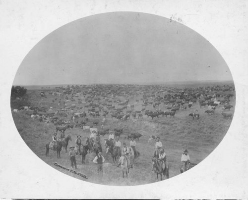 Round-up on the B. R. Grimes ranch, Woodward County, Oklahoma Territory - Page