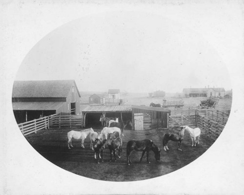 Sombart Ranch on Mule Creek, Comanche County, Kansas - Page