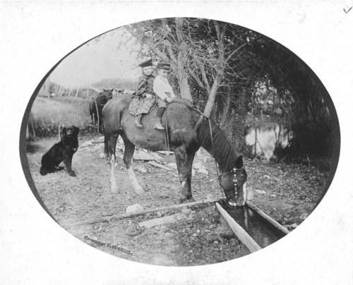 George Allen's children, Meade, Kansas - Page