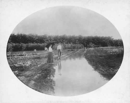 C. D. Perry's irrigation ditch near Englewood, Kansas - Page