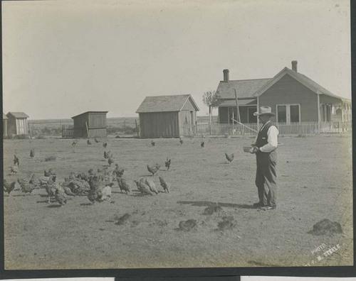 A man feeding chickens - Page