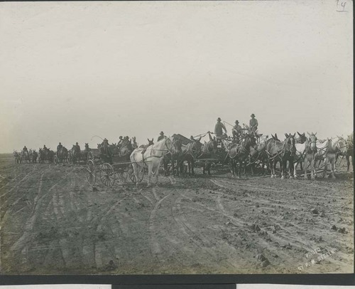 Men in horse-drawn carriages, wagons, and equipment - Page