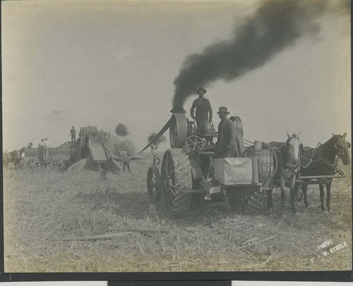 Threshing wheat - Page