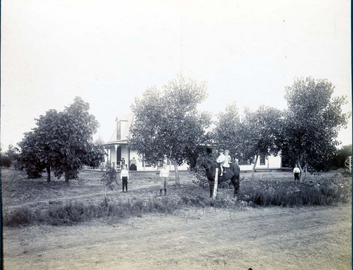 Children in the yard of a residence, Clark County, Kansas - Page
