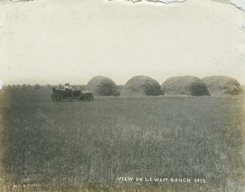 Wheat stacks on the L. E. Wait Ranch - Page
