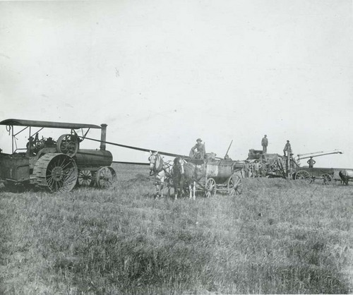 Harvesting wheat, Seward County - Page