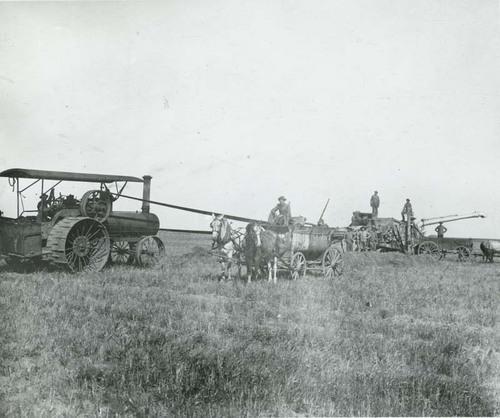Harvesting wheat, Seward County - Page