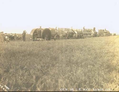 Wheat harvest on the L. E. Wait Ranch - Page
