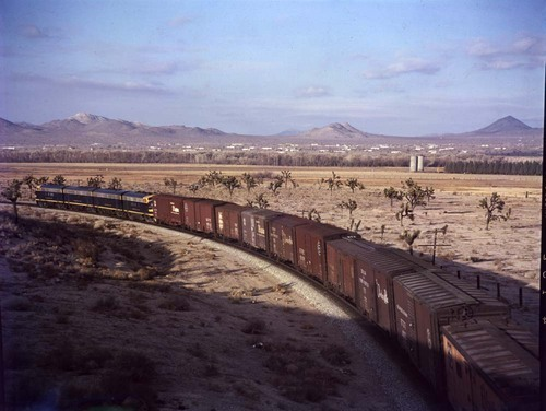 Eastbound train, Frost, California - Page